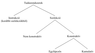 3-5-1 A szelekció kibontakozott rendszere Cziko (1995, 309.) felfogásában